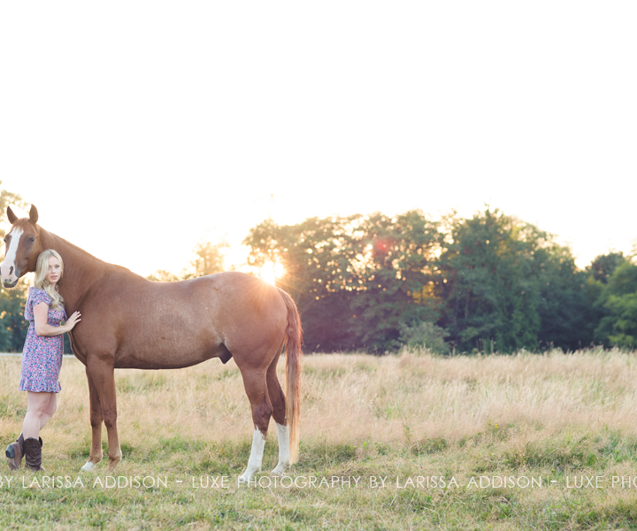 ashley + indy - equine connection - south langley equine photography