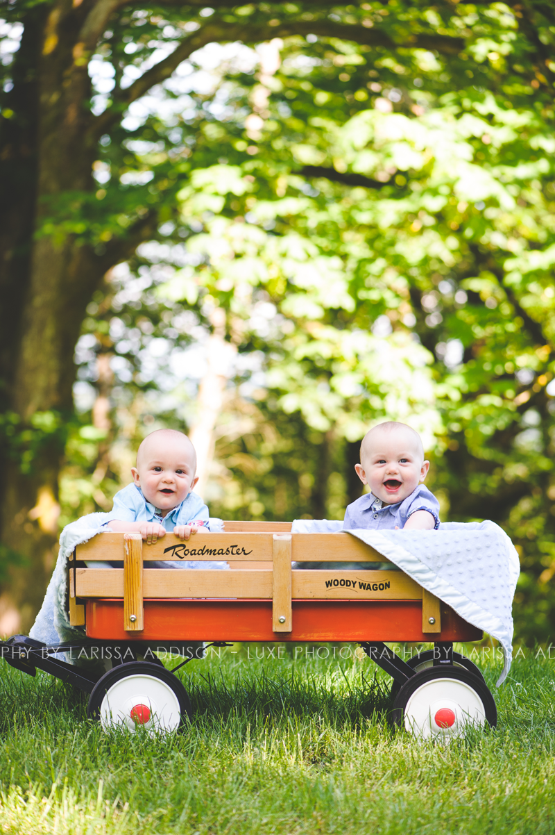 South Surrey Children's Photographer Luxe Photography